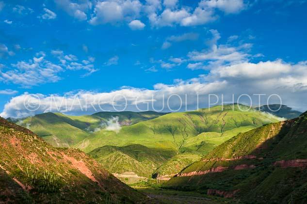 Guoli_06_001141