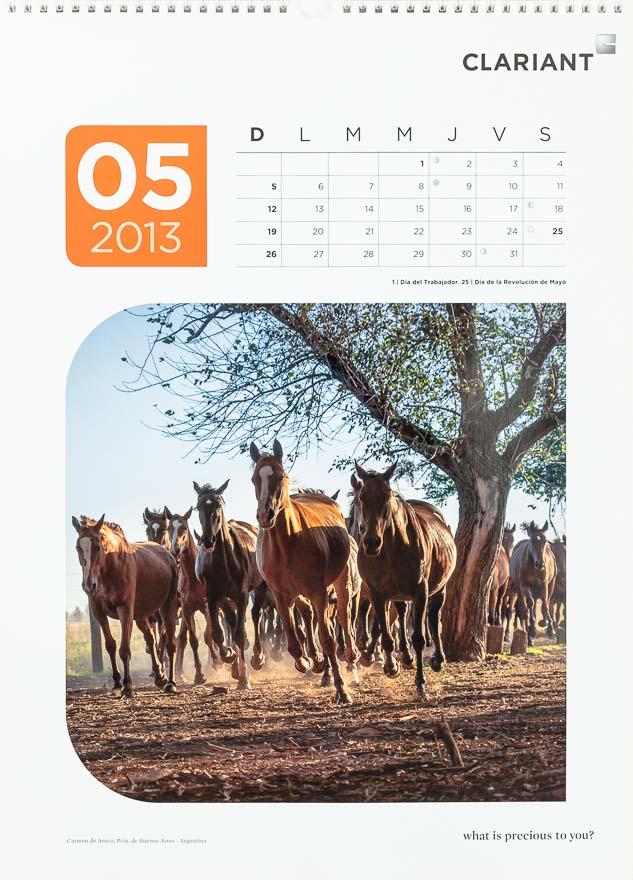 Página del mes de mayodel Calendario corporativo Clariant 2013, con una FOTOGRAFÍA de caballos al galope DEL BANCO DE IMÁGENES DE MARCO GUOLI