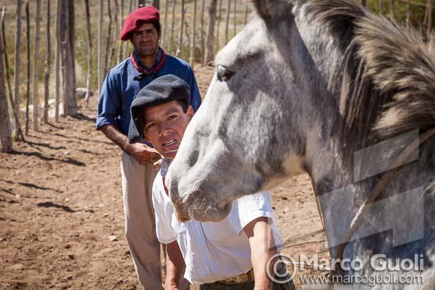 Fotografía de dos gauchos trabajando con caballos en un alambrado de Marco Guoli, una de las 7 imágenes elegidas para la muestra para el día del caballo organizada anualmente por el  Ministerio de agricultura, ganadería y pesca de la Argentina