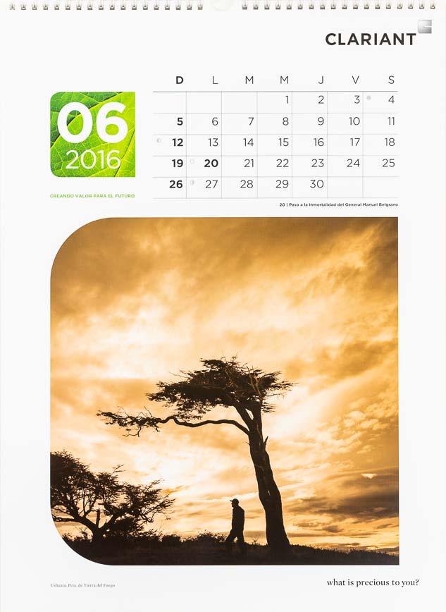 Página del mes de junio del Calendario corporativo Clariant Argentina, con una foto de una lenga, Tierra del fuego