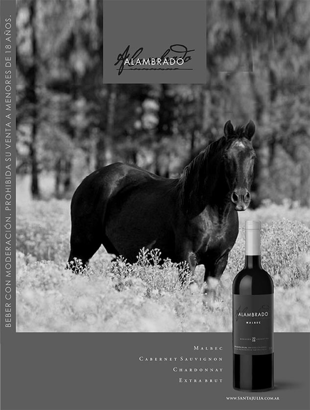 Boceto de la tapa de la brochure Alambrado de Bodega Familia Zuccardi con una imagen de caballos de Marco Guoli