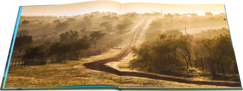 Contra tapa del libro fotográfico Bioparque M'Bopicuá de Uruguay con una imagen de la entrada en una mañana con bruma