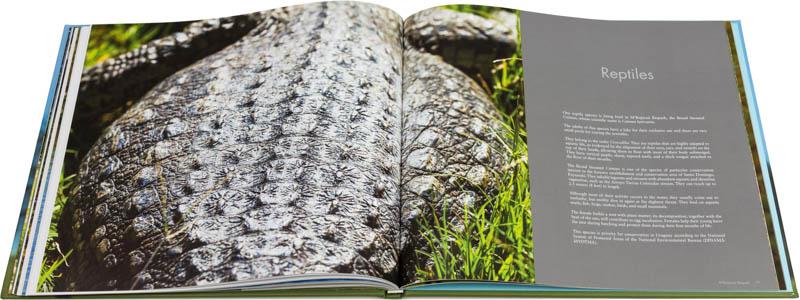 Doble página interna dedicada a los reptiles del Libro fotográfico Bioparque M'Bopicuá