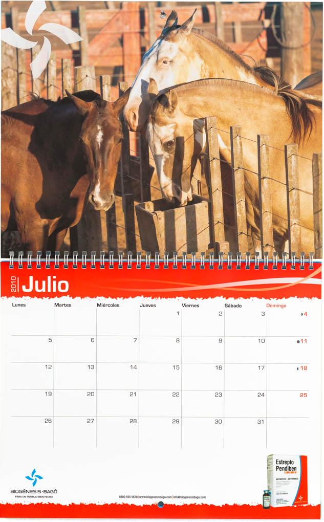 Mes de julio del calendario corporativo Biogenesis-Bagó con una foto de caballos en un corral de Marco Guoli