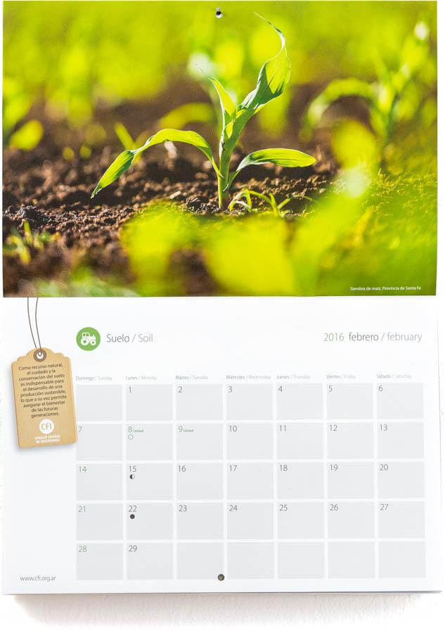 Pagina con el mes de febrero del Calendario Consejo Federal Inversiones, con una fotografía de una planta de maíz DEL BANCO DE IMAGENES DE MARCO GUOLI, Argentina