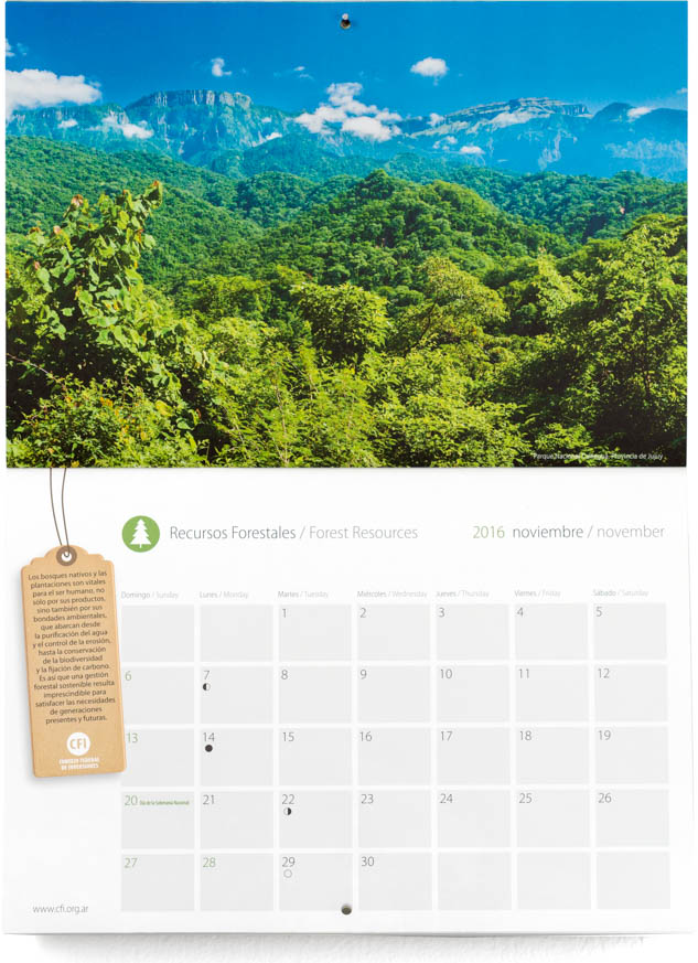Pagina con el mes de noviembre del Calendario Consejo Federal Inversiones, con una fotografía del Parque Nacional Calilegua, Jujuy, Argentina DEL BANCO DE IMAGENES DE MARCO GUOLI, Argentina