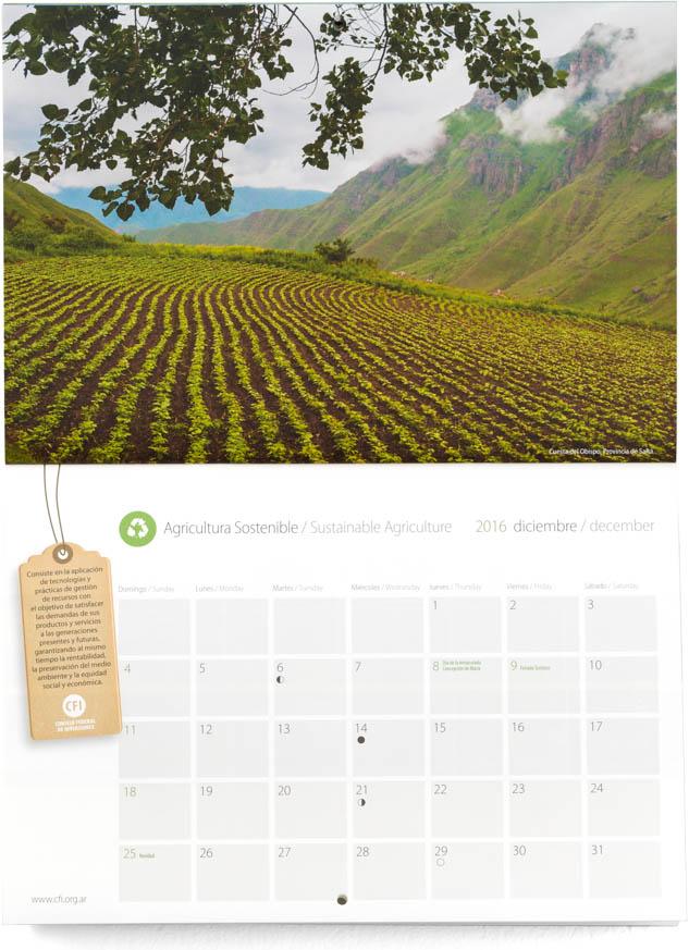 Pagina con el mes de idciembre del Calendario Consejo Federal Inversiones, con una fotografía de un cultivo en la quebrada de escoipe, Salta, DEL BANCO DE IMAGENES DE MARCO GUOLI, Argentina