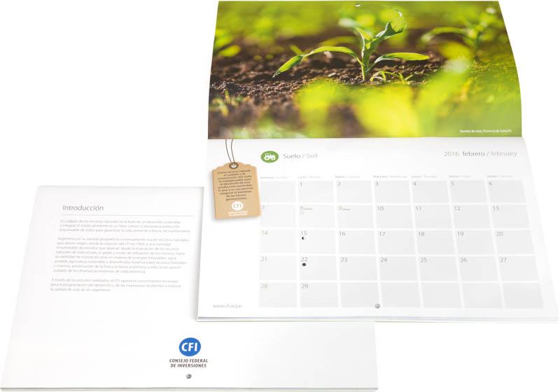 Pagina con el mes de febrero del Calendario Consejo Federal Inversiones, con una fotografía de una planta de maíz DEL BANCO DE IMAGENES DE MARCO GUOLI