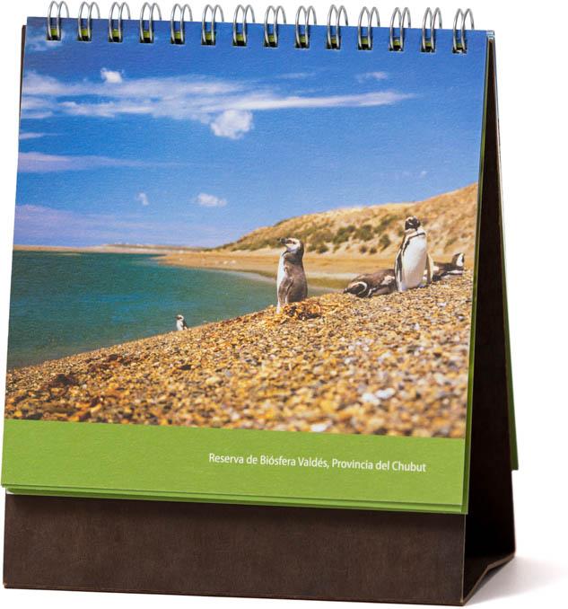 Página del Calendario CFI Consejo Federal de Inversiones con una fotografía de Península Valdés de Marco Guoli