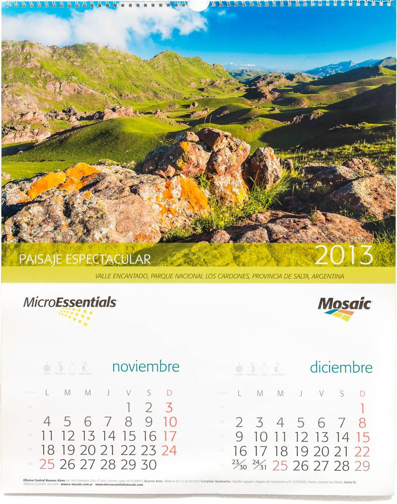 Bimestre noviembre diciembre del Calendario corporativo de pared Mosaic 2013 con fotografías en alta resolución del Parque Nacional Los Cardones de Marco Guoli
