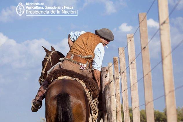 Muestra para el día del caballo en Ministerio de agricultura