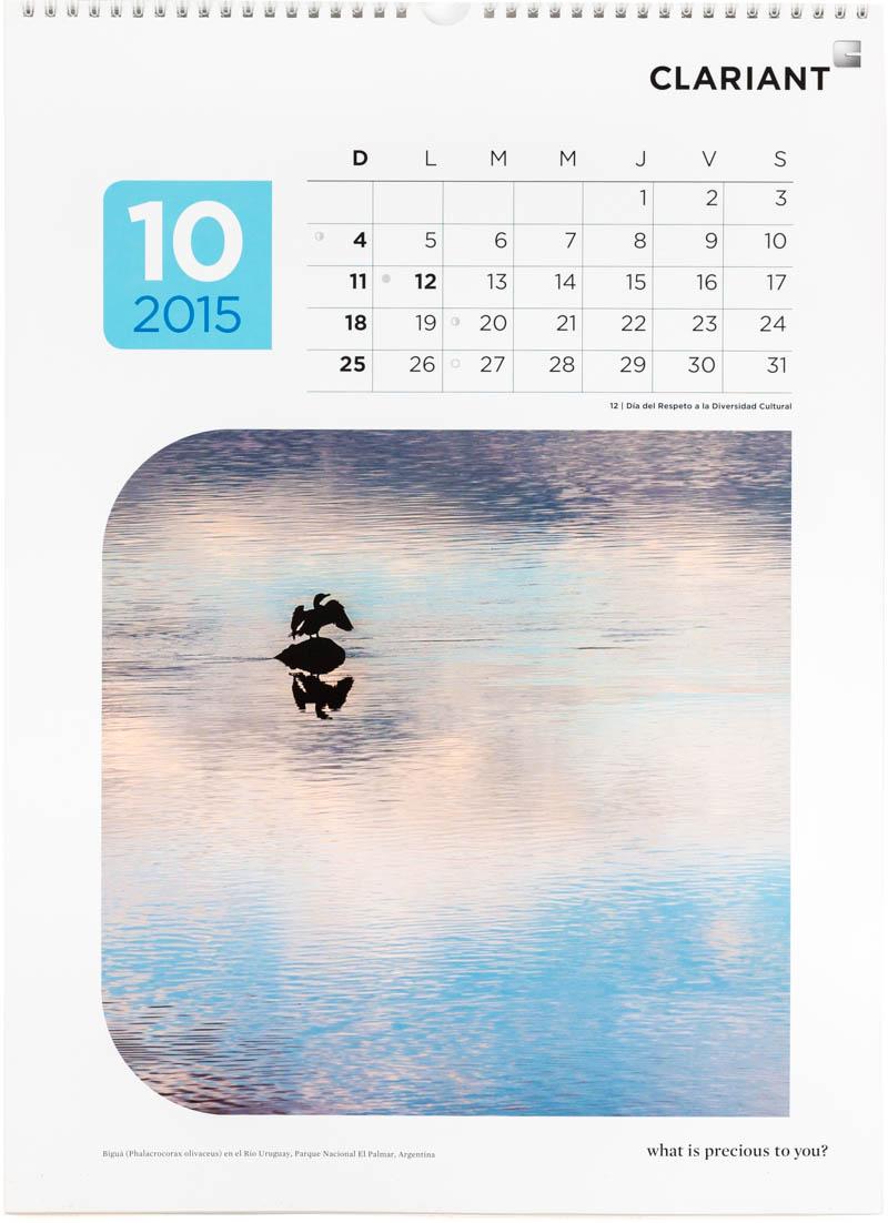 Página del mes de octubre del Calendario empresarial Clariant Argentina 2015 dedicado a el agua con una fotografía de un cormorán en el Parque Nacional El Palmar de Marco Guoli
