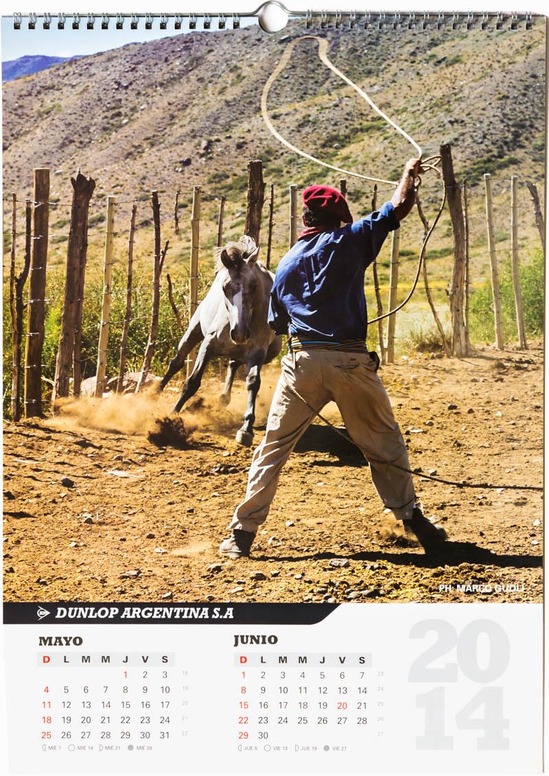 Página del bimestre mayo junio del Calendario empresarial Dunlop Argentina 2014 con una foto de un gaucho atrapando un caballo en Vallecitos del Banco de imágenes de Marco Guoli