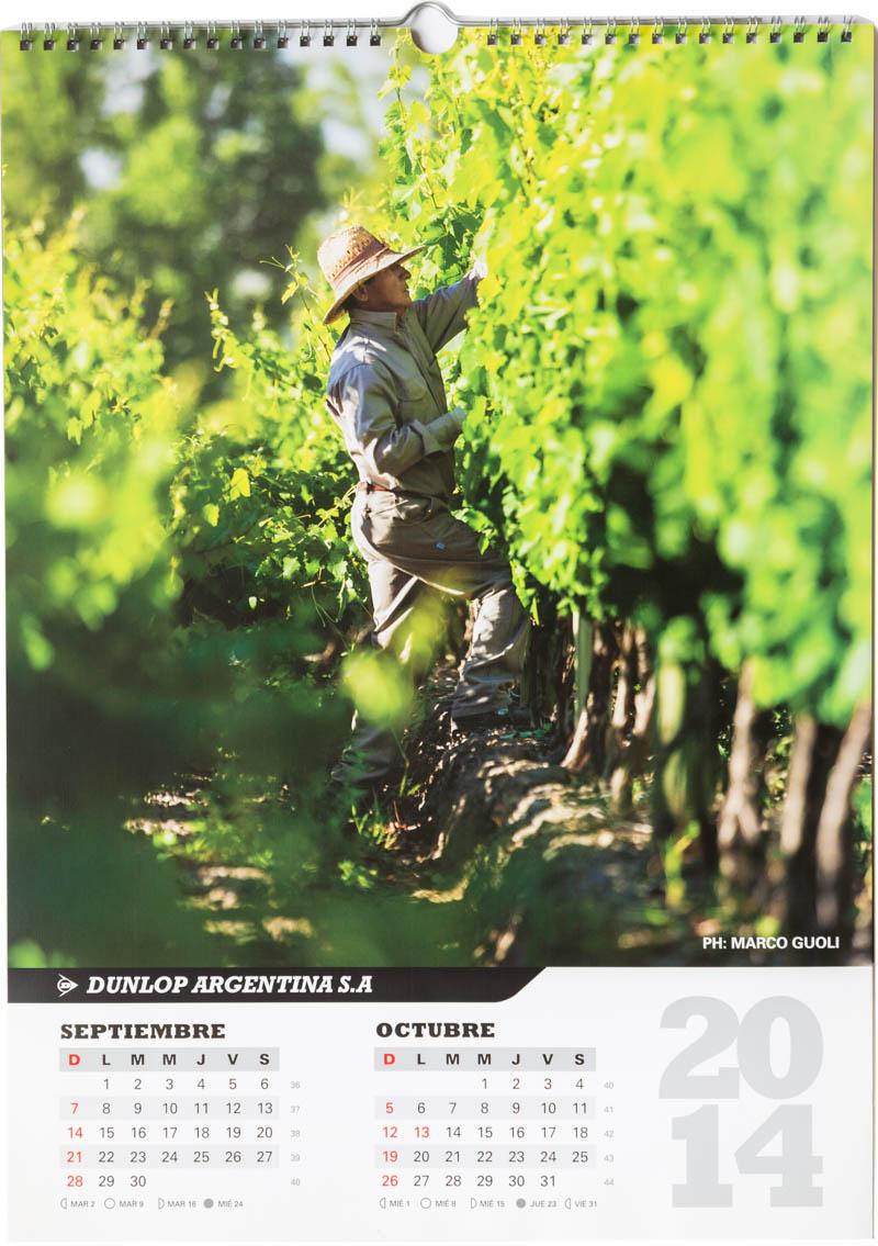 Página del bimestre septiembre octubre del Calendario empresarial Dunlop Argentina 2014 con una foto de un viñedo en Mendoza del Banco de imágenes de Marco Guoli