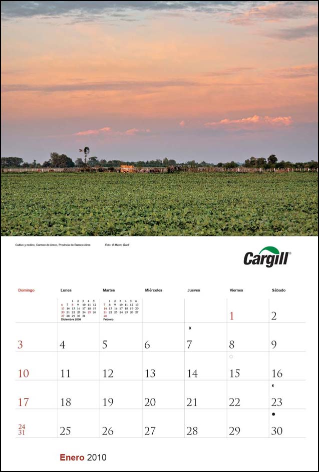 Imagen de la página del mes de enero del Calendario empresarial Cargill Argentina con una fotografía de un cultivo de soja del Banco de imágenes de Marco Guoli, Buenos Aires