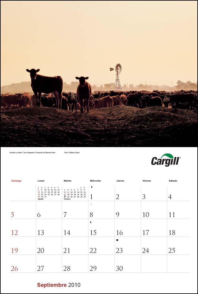 Imagen de la página del mes de septiembre del Calendario empresarial Cargill Argentina con una fotografía de un feed lot del Banco de imágenes de Marco Guoli, Buenos Aires