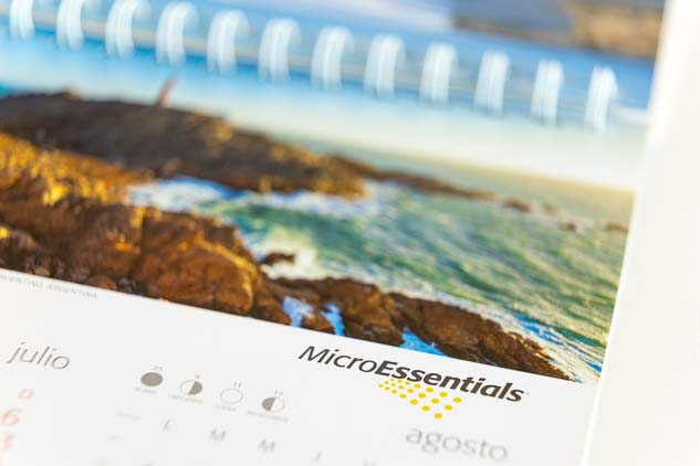 Tapa del Calendario corporativo Mosaic 2014 versión escritorio, con una fotografía en alta resolución del Banco de imágenes de Marco Guoli de Cabo Blanco, Tierra del fuego