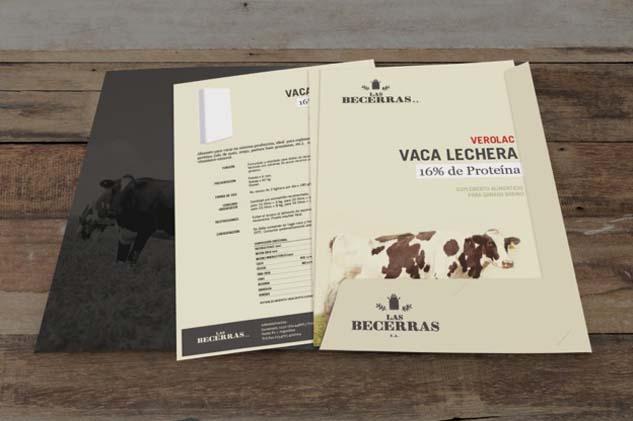 Interior de la Carpeta de presentación de producto de Las Becerras Lácteos Verónica, con fotografías de vacas holando-argentino pastando en un tambo del Banco de imágenes de Marco Guoli, Buenos Aires