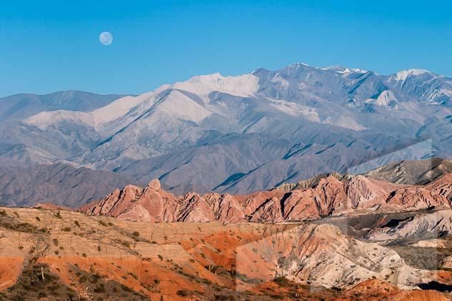 La pagina del mes de marzo del Calendario Argentina 2021, con una foto del Parque Nacional Los Cardones, Salta, Argentina
