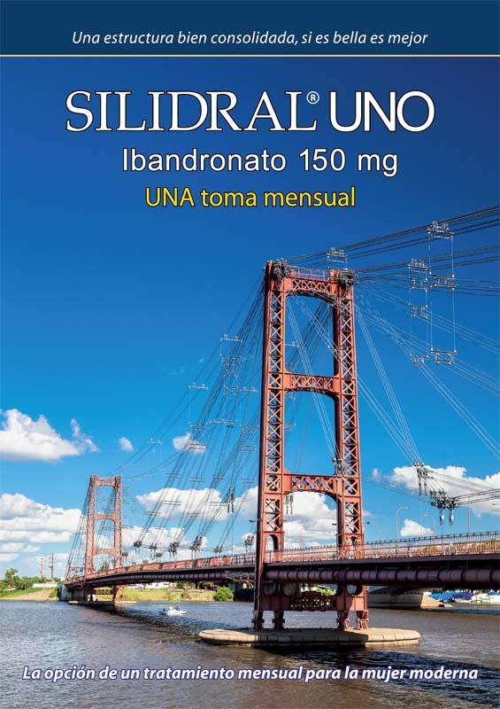 Tapa del folleto A4 Silidral Uno de Spedrog Caillon con la foto de calidad profesional del puente colgante de Santa Fé del Banco de imágenes de Marco Guoli, Argentina